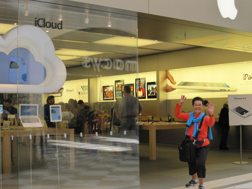 Lucy\'s Personal Project Apple Store in California